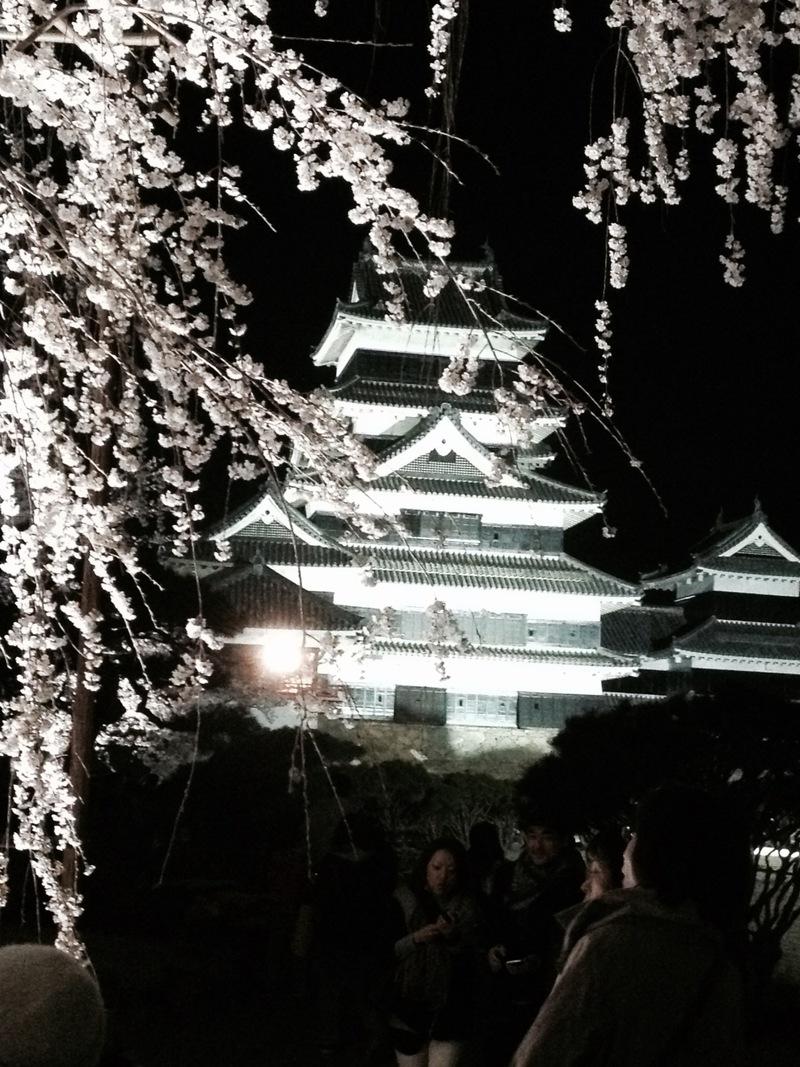 第20回 国宝松本城「夜桜会」開催中♪